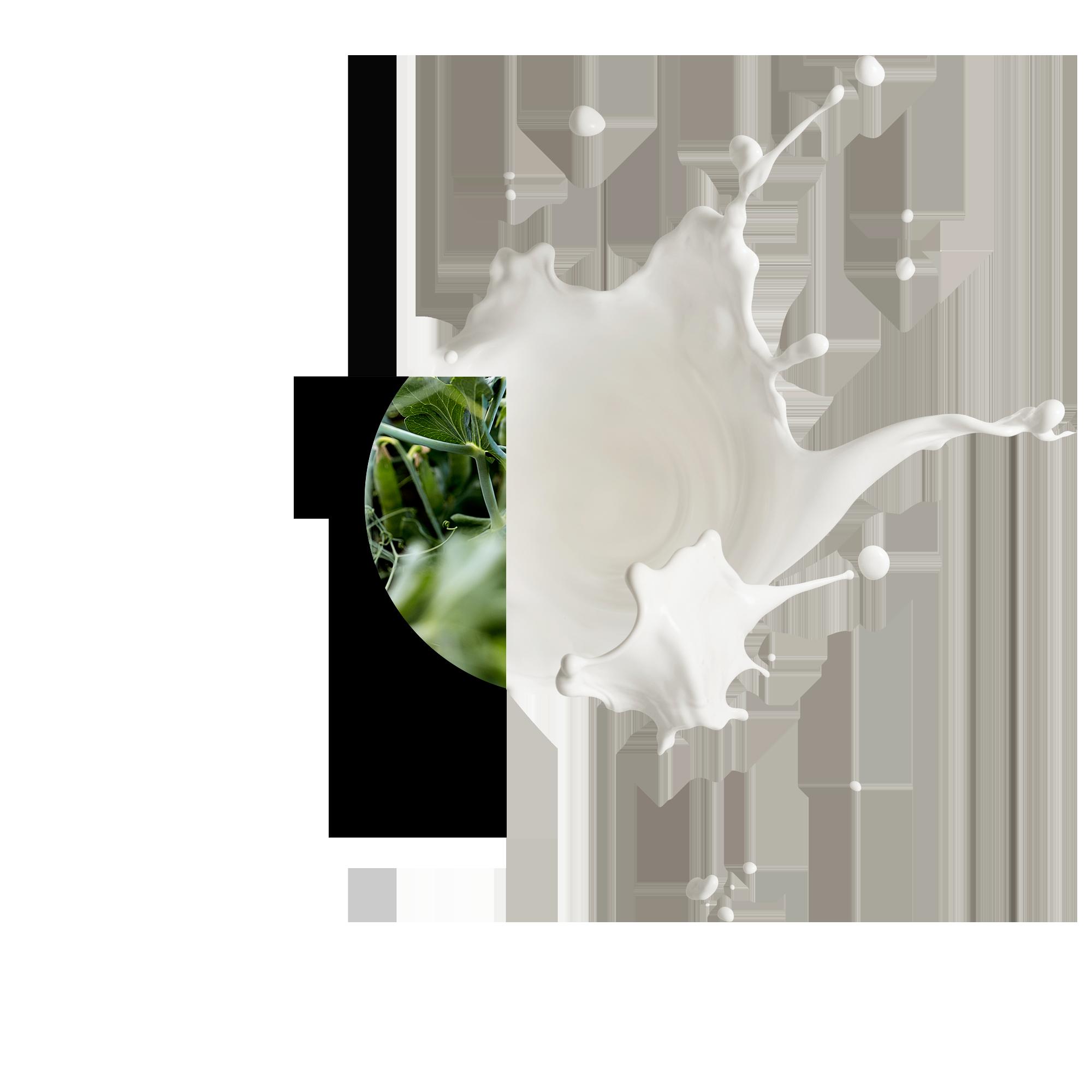 PURIS® Pea Protein 2.0