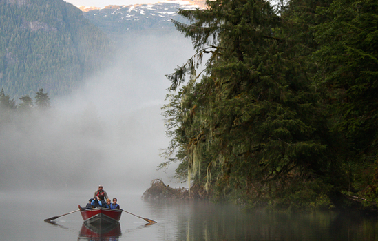 Explore misty channels by boat.