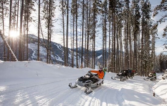 Choose a snowmobiling adventure through snow-covered trails
