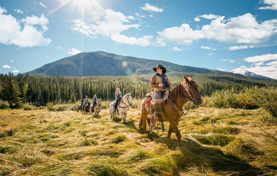 From enjoying a guided hike to learning how to be a cowboy, there is an option for everyone.