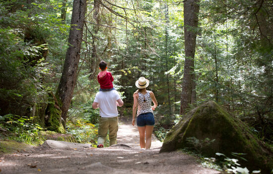 Explore the trails with a private hiking guide