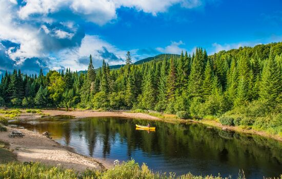 Paddle the Diable River in a canoe
