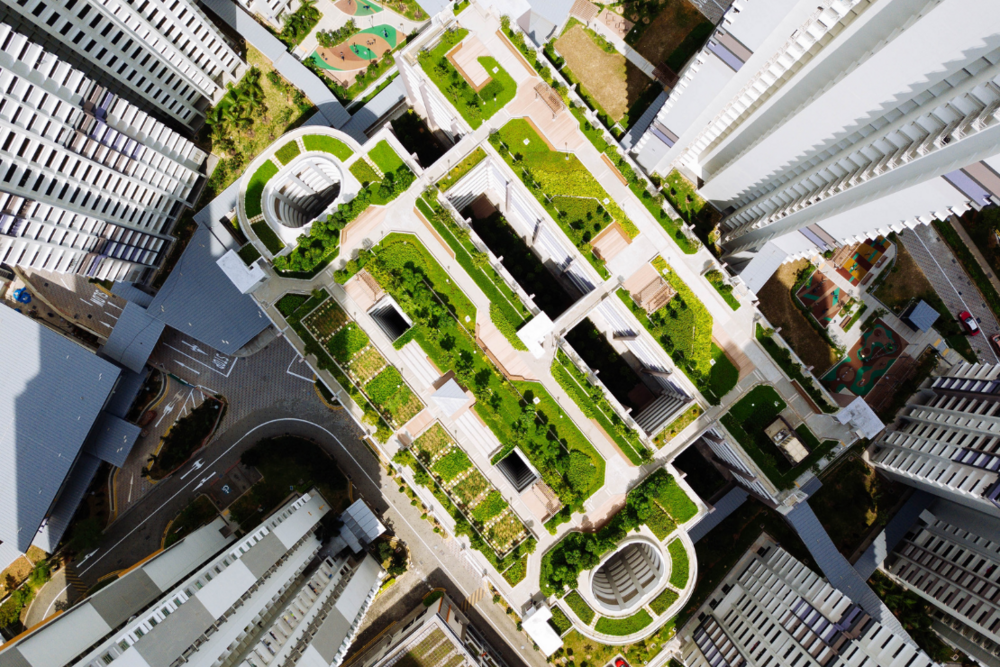 Green Roof Sustainability