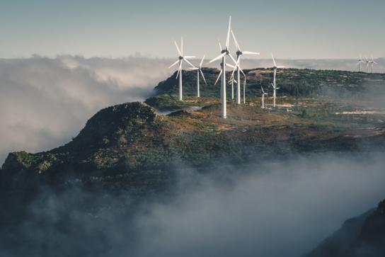 Wind Turbines in the Mist - Sustainability