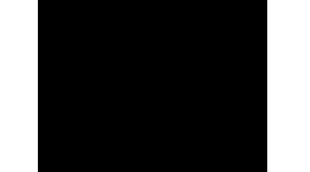 450x250-partnerlogo-knoxst