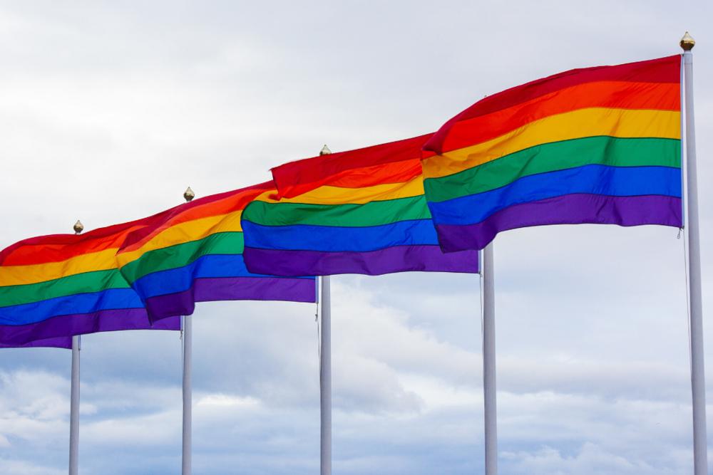 1110x740Pride-Rainbow-Flags