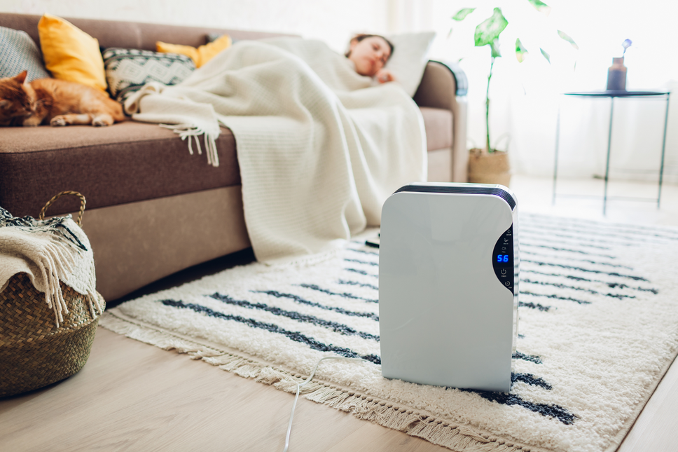 Woman on couch with humidifier on the floor