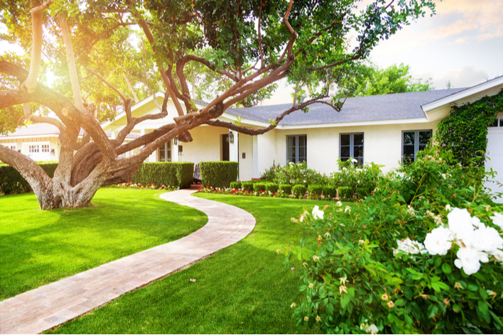 A white ranch-style house with exterior updated through landscaping