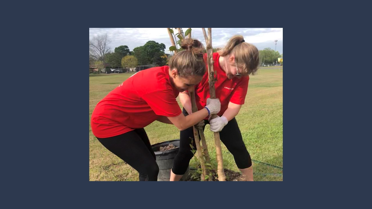 Volunteers and their families teamed up with Trees for Houston to plant trees at a local elementary school.