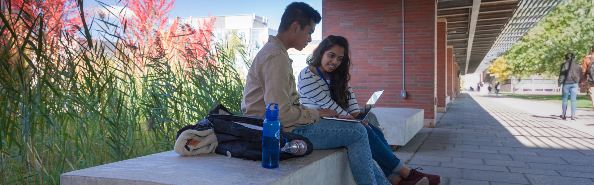 Students outside looking at a laptop