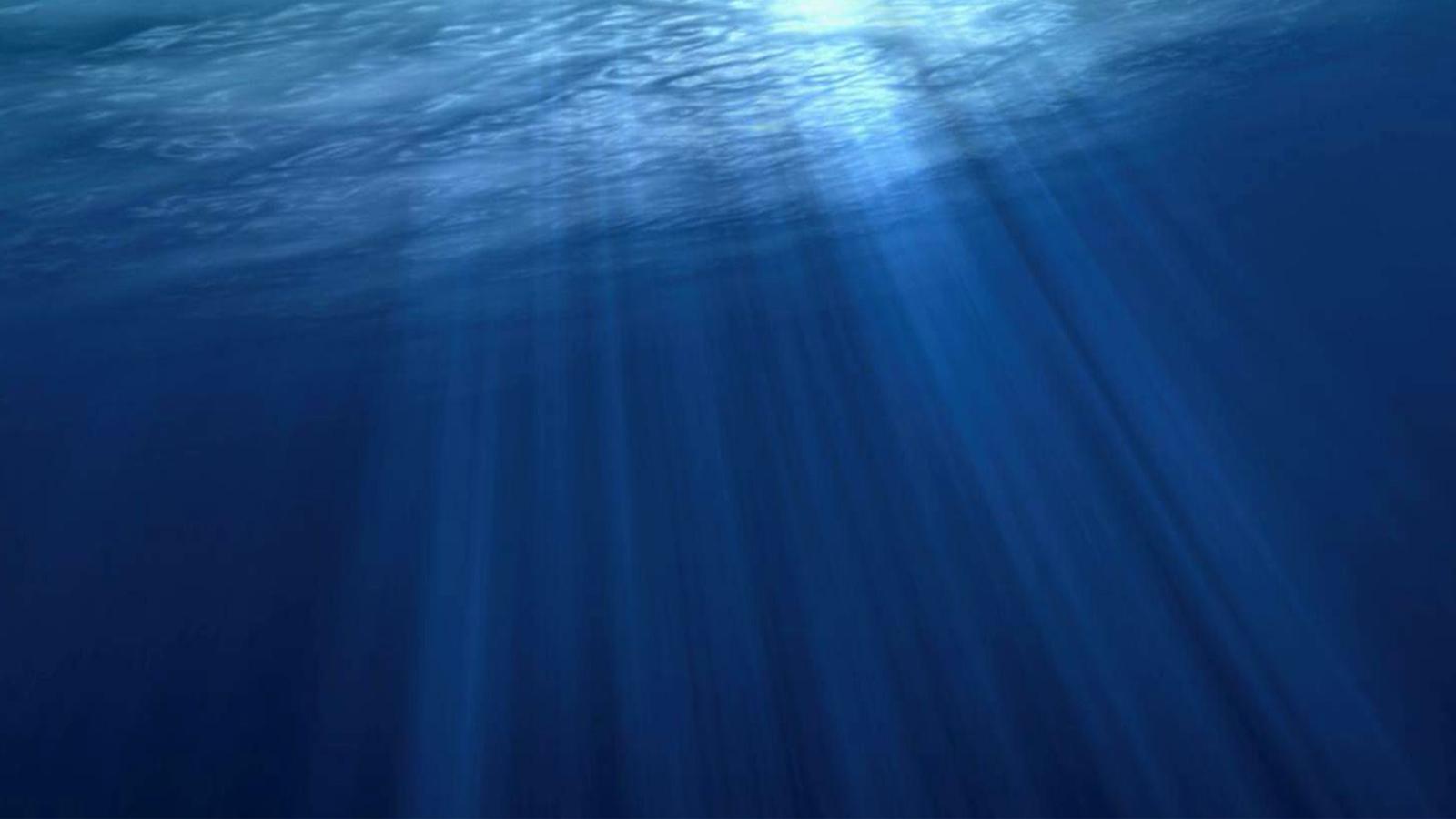 水下干预系统