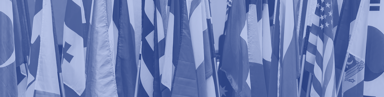 multiple flags from different countries header image