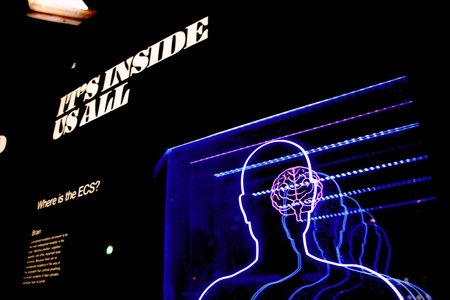 "light up sign of a human brain that says ""it's inside us all"""