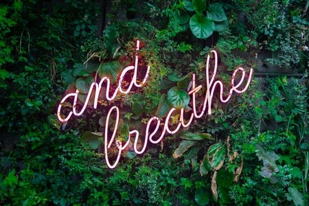 """and breathe"" neon sign on greenery"