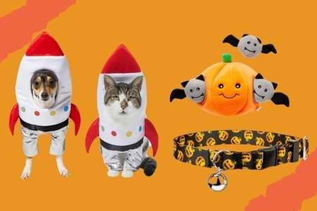 dog and  cat haloween toys