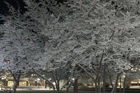 Geneseo snow scene