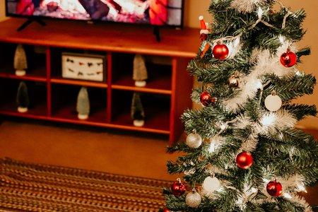 Christmas Decor / Christmas Tree