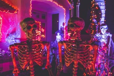 Skeletons as Halloween decor