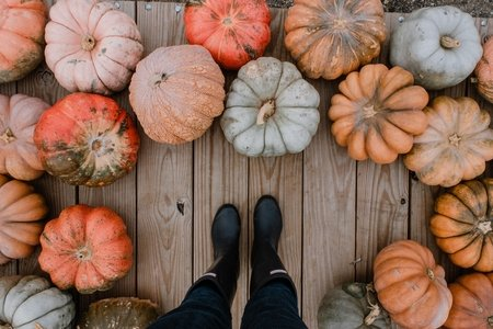 Standing around a variety of pumpkins