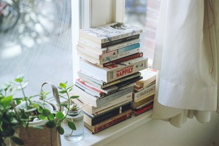 book, books, reading, read, plant