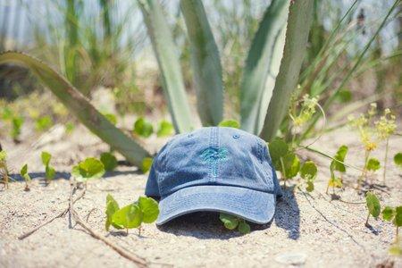 palm tree dad cap
