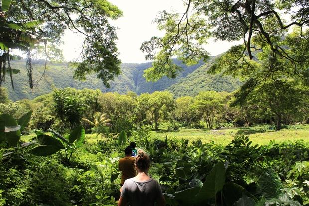 hawaii nature hikes original