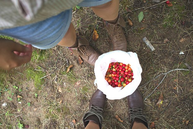 The Lalabrown Boots And A Bucket Of Cherries