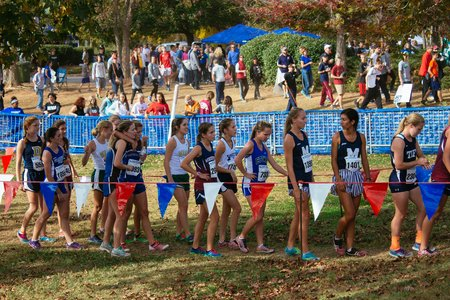 Sports Cross Country Girls In Line