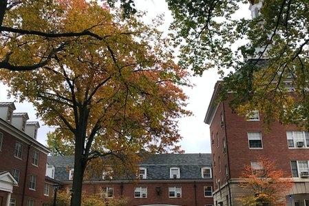 Ohio University East Green Fall