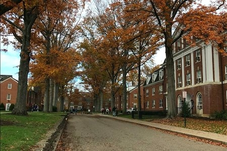 Ohio University Fall East Green