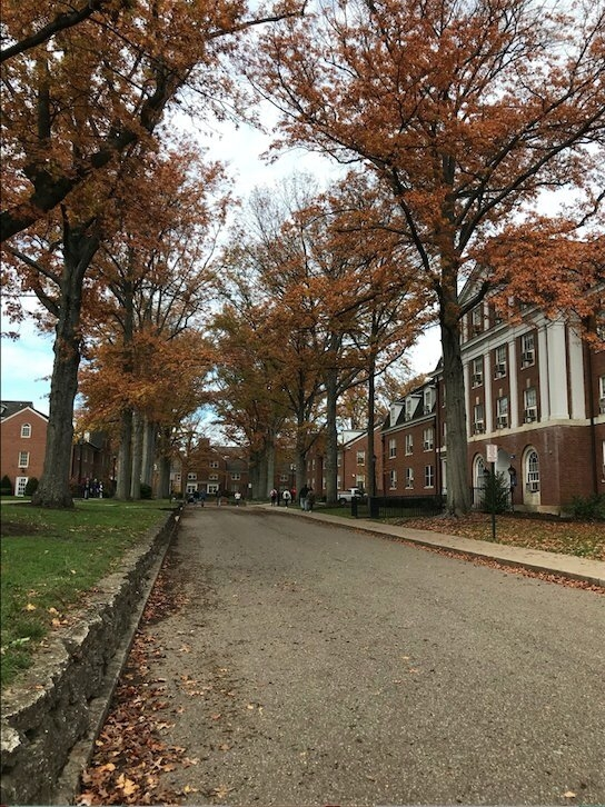 Ohio University Fall East Green