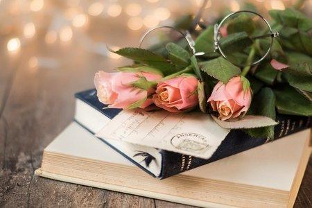Roses Rose Pink