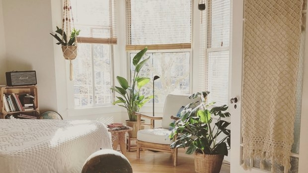 Bright living room area with green plants