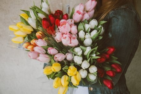 woman holding bouquet of tulips
