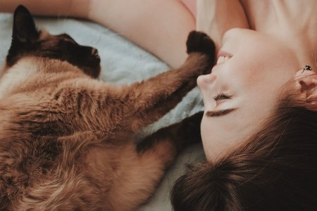 Girl lying on bed with cat