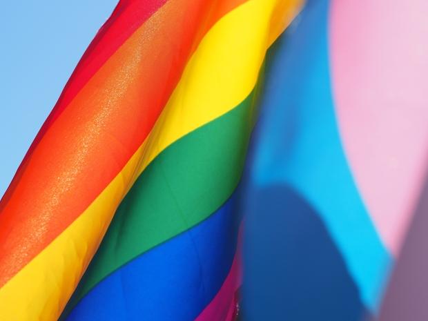 LGBT pride flag and trans pride flag