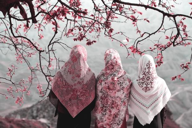muslim women under cherry blossoms