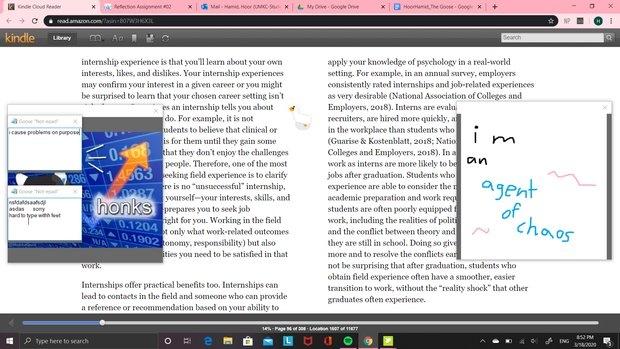 A screenshot of the desktop goose on my PC screen