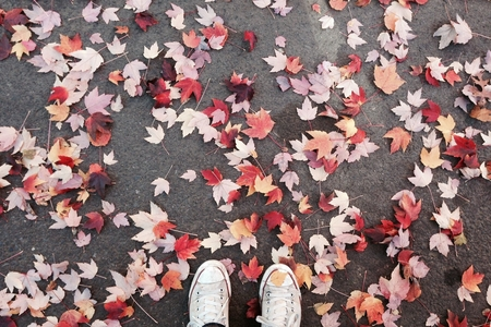 converse with leaves