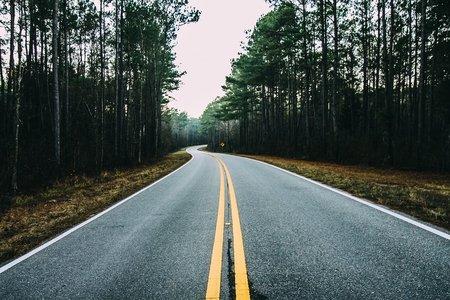 Road cutting through a forest