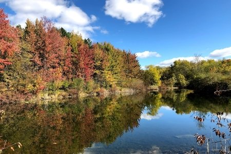 Autumn trees reflected in lake with blue sky