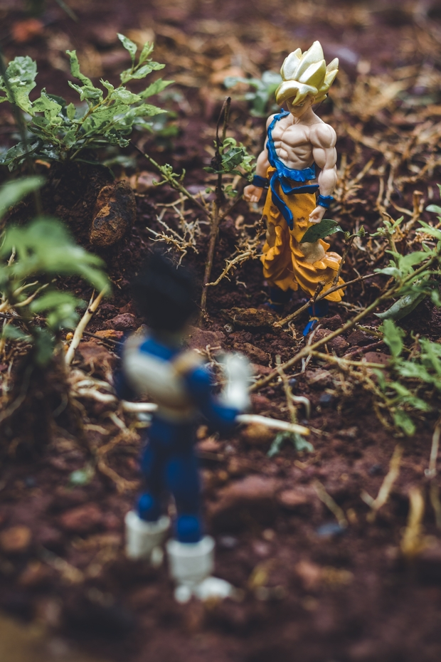Goku and Vegetta anime action figures on soil beside plants