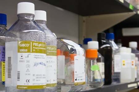 Glass bottles in a lab