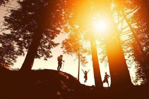 sunset, hike, forest, tree, friends, fun, summer, sun