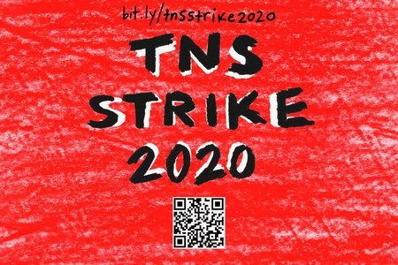 The new school strike image