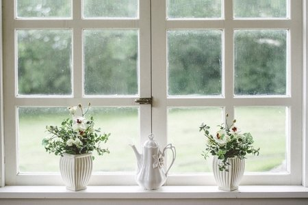 flowers on white windowsill