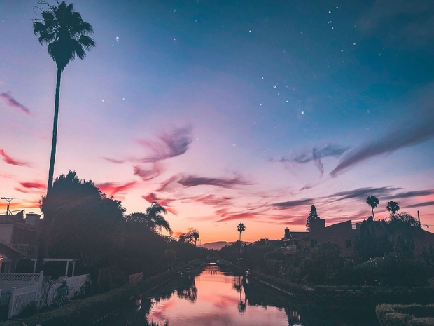 silhouette of palm trees and houses during sunset