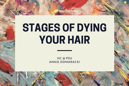 GRAPHIC FOR AN ARTICLE ABOUT DYING HAIR