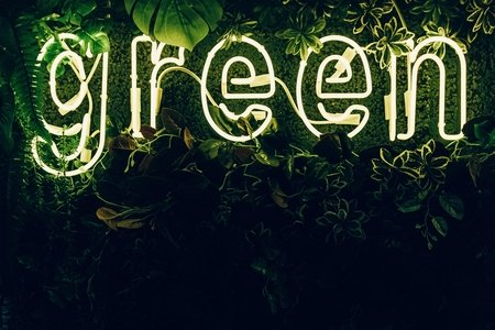 Green neon sign, green plants