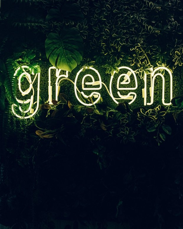 Green neon sign, green plants